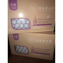 Kanjo Hot Water Bottle Acupressure Pillow ACNKANHOTP