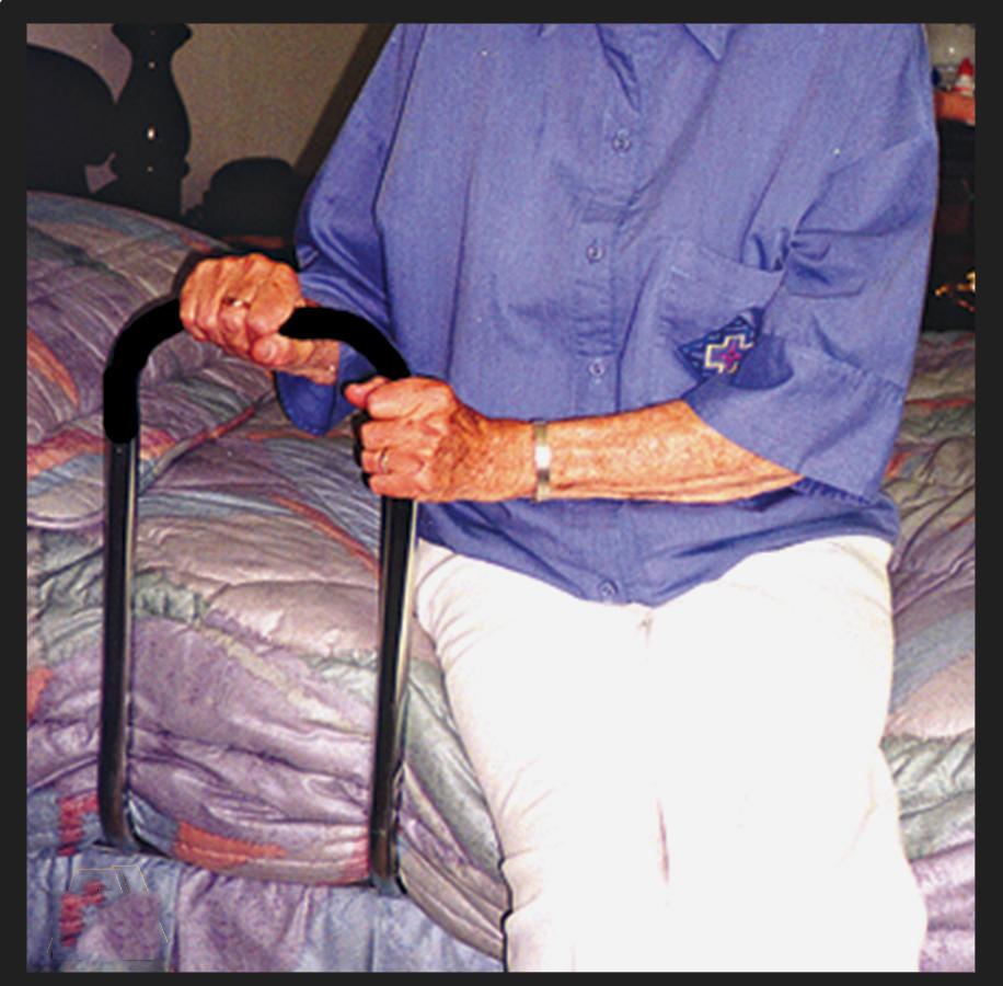 "MTS Freedom Grip® Bed Handle, 20-1/2"" x 9""  RI501"